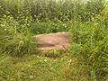 Robenhausen (neolithische und bronzezeitliche Seeufersiedlungen) 2013-09-15 15-31-42.jpg