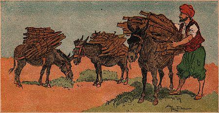 clôture chevaux en bois