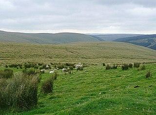Elenydd