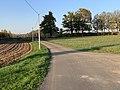 Route Marillat - Saint-Cyr-sur-Menthon (FR01) - 2020-10-31 - 5.jpg