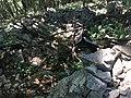 Rovine Monti Corno 4.jpg