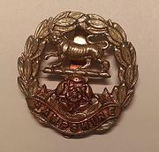 Royal Hampshire Regiment Cap Badge.jpg