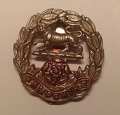 Royal Hampshire Regiment Cap Badge.jpg
