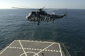 Royal Marines fast rope from Sea King to USNS Pecos (T-AO-197) 2002.jpeg