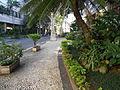 Rua Lopes Quintas (3).JPG