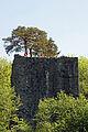 Ruine Weissenau06463.jpg