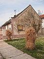 Ruski Krstur - 45.jpg