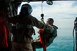 SAREX in the Arabian Gulf 160202-A-NU445-002.jpg
