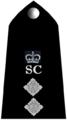 SC03-SInsp.png