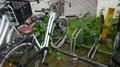 Safe loops bicycle parking (variation).png
