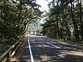 Saga Prefectural Road No.250 and Nijinomatsubara Station in Niji Pine Grove.jpg