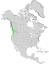 Salix sitchensis range map 0.png