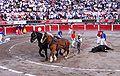 San marcos bullfight 03.jpg