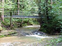 Scheidegger Wasserfälle (38).jpg