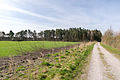 Schlangen - 2015-04-12 - LIP-001 Strothe-Niederung (41).jpg