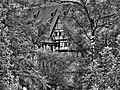 Schloss und Kloster Bebenhausen (8485744882).jpg