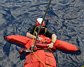 Search and rescue swimmer 140326-N-HB951-034.jpg