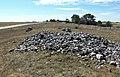Seby gravfält (Raä-nr Segerstad 24-1) 0616.jpg