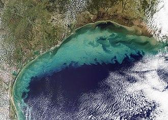 Hurricane Ida - Sedimentation in the northwestern Gulf of Mexico in the wake of Hurricane Ida