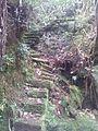 Sentier bébour - panoramio.jpg