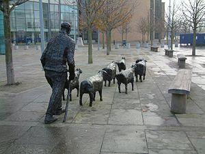 Deborah Brown - Sheep on the Road sculpture, Belfast