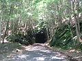 Shepaug tunnel south portal 027.JPG