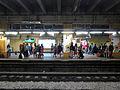 Sheung Shui Station Platform mainlanders 201503.jpg