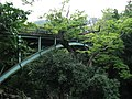 Shin Saruhashi -01.jpg
