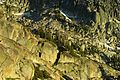 Sierras granite cliffs - Flickr - pellaea.jpg