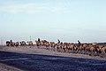 Silk Road 1992 (4368342840).jpg
