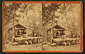Silver Springs Run, Fla. Agnew's Turpentine Establishment. The Still, from Robert N. Dennis collection of stereoscopic views.jpg