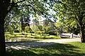 Sjukhusparken-Umeå-2015-06-17.jpg