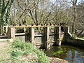 Sluice gates, by the River Dart, near Staverton - geograph.org.uk - 1237464.jpg