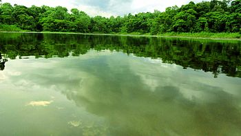 Small Lake nearby Johilla river.jpg
