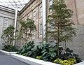 Smithsonian Gardens in October (22758668121).jpg