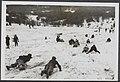 Sneeuw en vorst over Nederland. In de omgeving van Haarlem zocht de jeugd voora…, Bestanddeelnr 072-0926.jpg