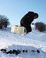 Snow sports (6859325993).jpg