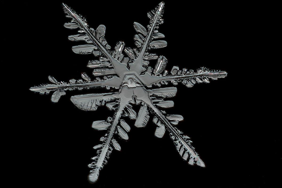 File:Snowflake Detail.jpg