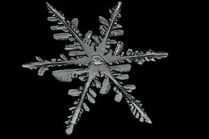 Snowflake - Image: Snowflake Detail