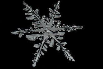 Snowflake - Naturally formed snowflakes differ from one another through happenstance of formation. The characteristic six branches is related with the crystal structure of ice.