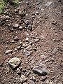 Soave Volcanic Soil.JPG