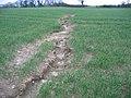 Soil erosion, Warmwell, Dorset - geograph.org.uk - 52279.jpg