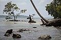 Solomon Coast.jpg