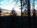 Sommerlicher Herbst Herrenstuhl - panoramio (9).jpg