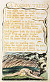 Songs of Innocence and of Experience, copy B, 1789, 1794 (British Museum) object 48 A Poison Tree.jpg