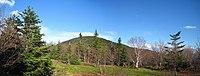 Spring view of Thomas Cole Mountain.jpg