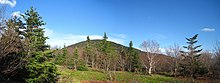 Spring view of Thomas Cole Mountain.jpg