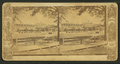 St. James Hotel, Jacksonville, Fla, from Robert N. Dennis collection of stereoscopic views.png