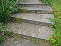 Stairway to Heaven (4831274287).jpg