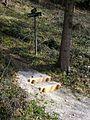 Stallauer Weiher Bergpfad - panoramio.jpg